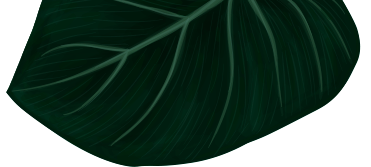 leaf-bottom